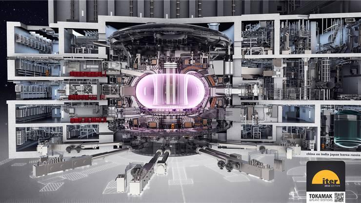 Damit soll die Kernfusion gelingen: Modell des Versuchsreaktors im Querschnitt.