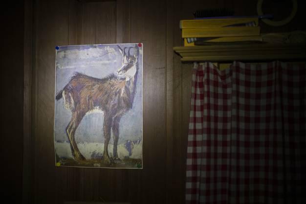 Eine Zeichnung einer Gams und Schachteln mit Villiger-Kiel-Zigarren in der Jagdhütte.