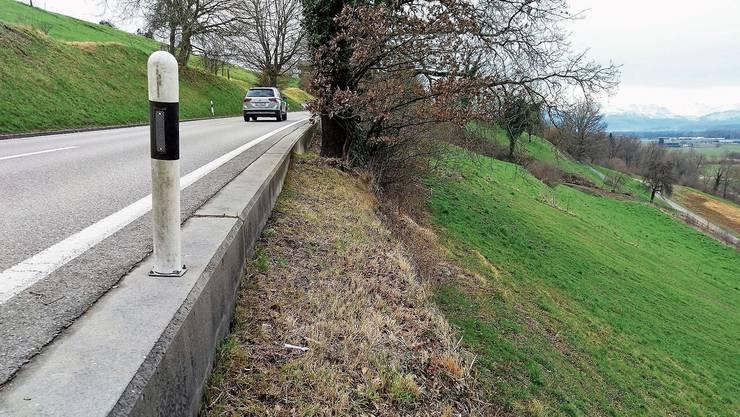 Die Kantonsstrasse zwischen Unter- und Oberlunkhofen weist «offensichtlich akute sicherheitsrelevante Mängel» auf.