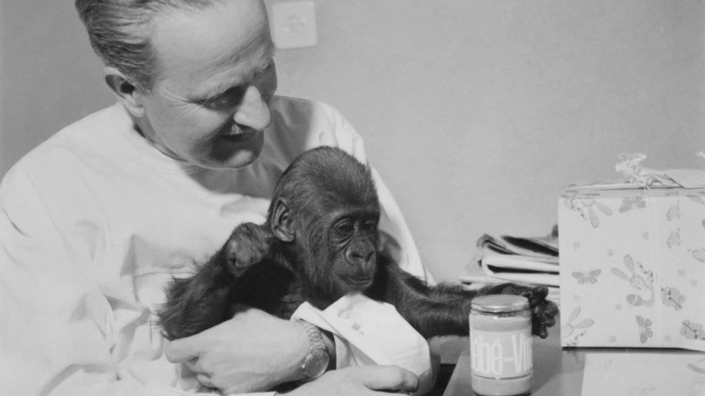 Goma wuchs nach ihrer Geburt 1959 zunächst bei Zoodirektor Ernst Lang auf. (Archivbild)