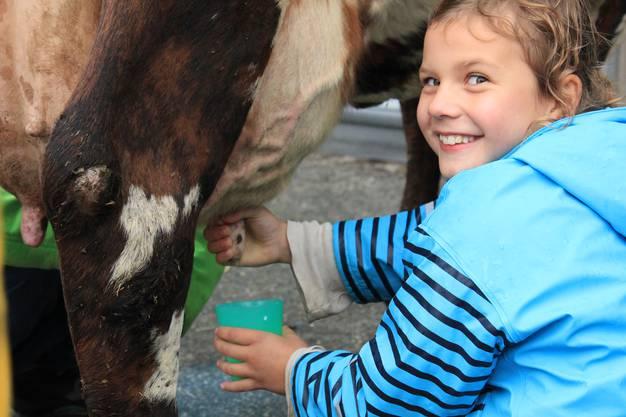Meret melkt - Begeisterte Besucherin zapft Frischmilch