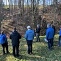 Der Wald am Uferbord der Siggern wurde ausgelichtet und kann sich in den nächsten Jahrzehnten verjüngen.