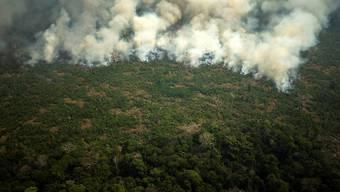 Brasilien setzt nach internationaler Kritik das Militär für die Brandbekämpfung im Amazonasgebiet ein.