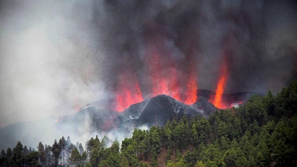 Vulkanausbruch auf La Palma – Schaulustige behindern Evakuierung