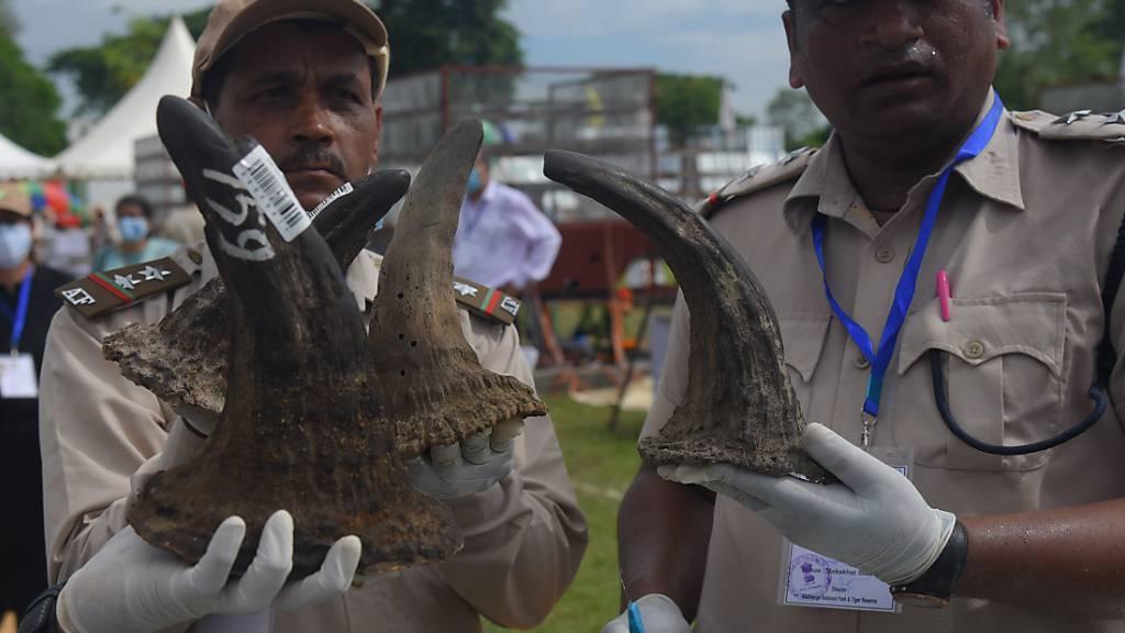 Illegaler Handel: Indische Behörden verbrennen Nashorn-Hörner