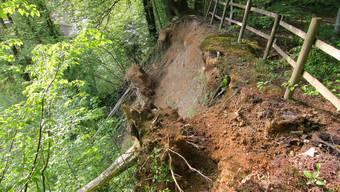 Die Reppisch bringt den Hang beim Brüggliweg in Dietikon ins Wanken. Umgekippte Bäume zeugen davon.