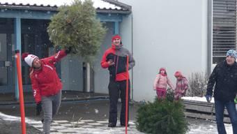 In Mülligen fliegen Tannenbäume (Januar 2019)