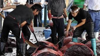 Japanische Walfänger zerkleinern einen Wal (Archiv)