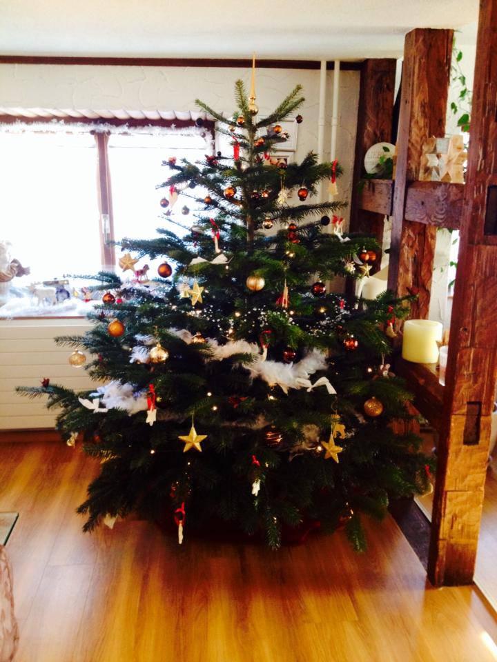 Der Christbaum von Melanie