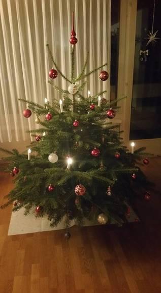 Der Christbaum von Ursi