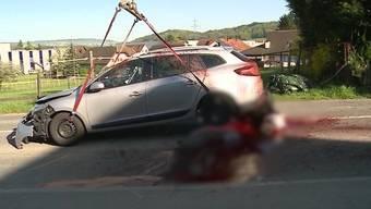 Ein entlaufenes Pferd wird un Brunegg von einem Auto erfasst und erliegt noch vor Ort seinen schweren Verletzungen. Der Fahrer musste ins Spital.