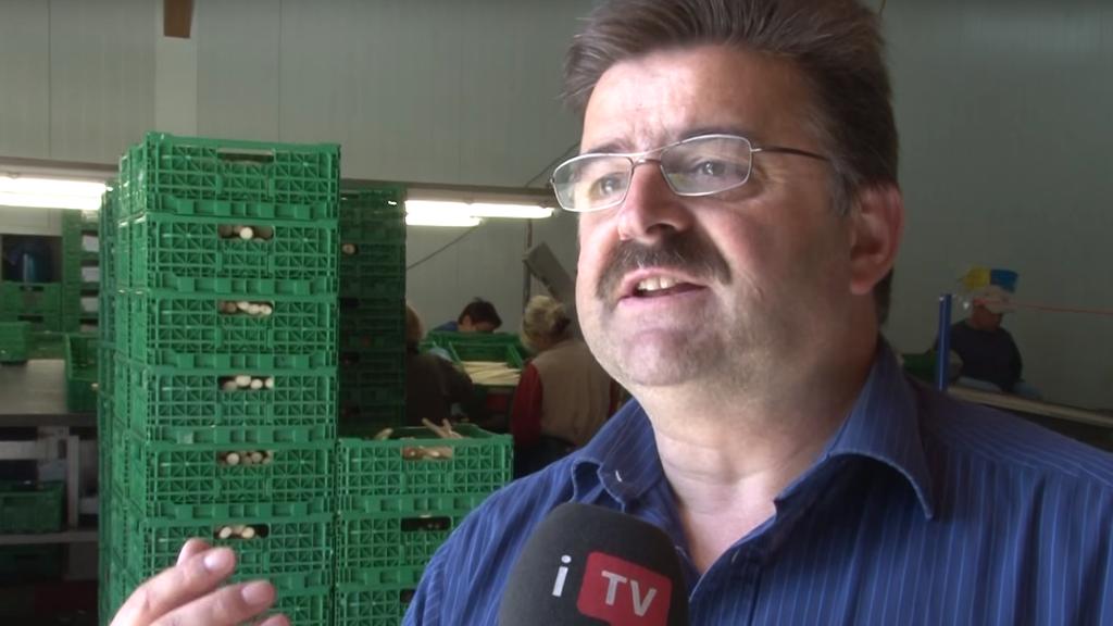 Stefan Britschgi will in Diepoldsau eine Gemüsehalle bauen. Dabei hat er in seinem Heimatdorf eine mittlere Staatskrise ausgelöst.