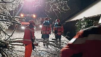 Die Feuerwehr Raurica war am Wochenende unter anderem damit beschäftigt, umgestürzte Bäume zu entfernen.