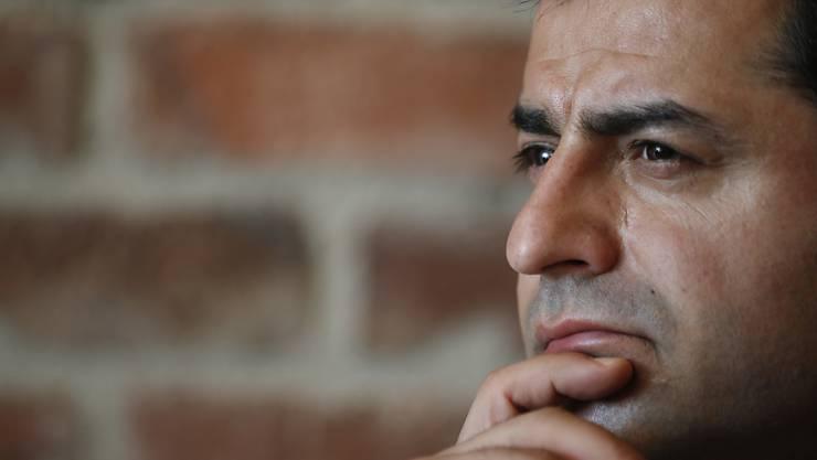 Selahattin Demirtas ist der Vorsitzende der oppositionellen Demokratischen Partei der Völker (HDP).