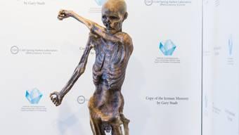 Gletschermann Ötzi - gut 5000 Jahre nach seinem Tod vom US-amerikanischen Paläontologen Gary Staab nachgebildet -, wie er im Südtiroler Archäologiemuseum in Bozen steht.