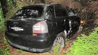 Audi-Fahrer prallt im Boowald in eine Tanne