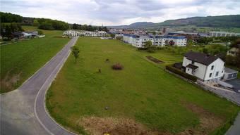 Auf dieser Wiese in Rickenbach soll das neue Pflegeheim des Vereins Haus zur Heimat entstehen.