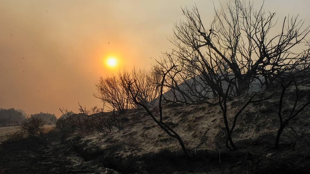 Kein Ende der Hitze in Griechenland – Brand auf Rhodos