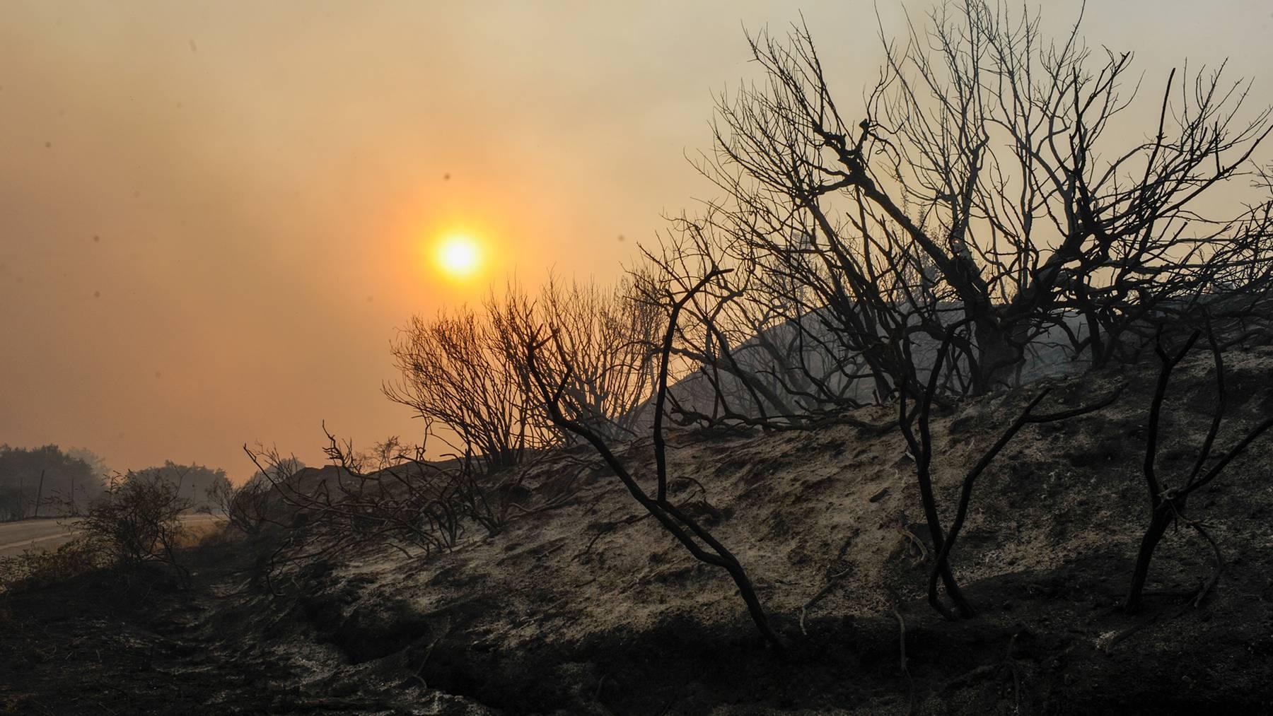 Grossbrand auf der Ferieninsel Rhodos.