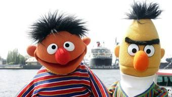 Ernie und Bert dienen auch der Wissenschaft (Archiv)