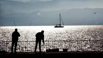 Insgesamt wurden von der Kantonspolizei Schwyz und Zürich 100 Hobbyfischer kontrolliert - Bei welchen es nur wenig zu Beanstanden gab.