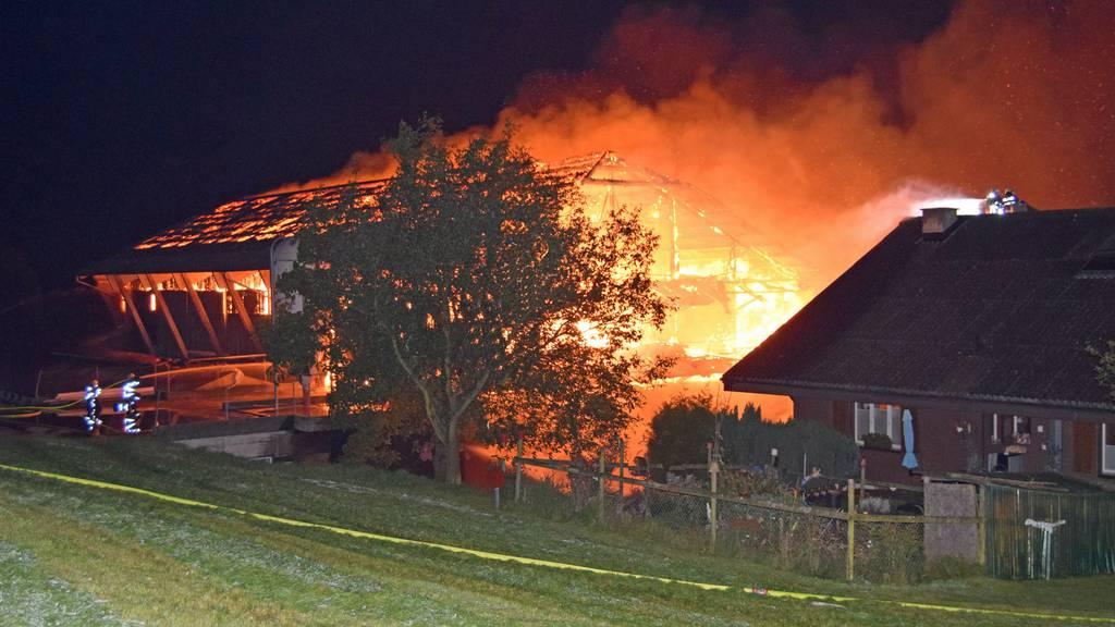 Scheunenbrand fordert mehrere tote Tiere