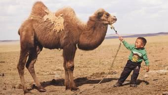 Impressionen aus dem Dorfleben im mongolischen Dorf Mandakh; abfotografiert aus dem Bildband von Martin Vogt.