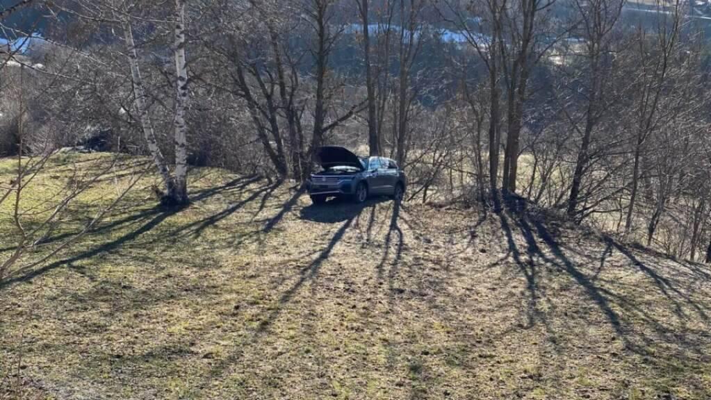 Das Auto kam bei einer Baumgruppe zum Stillstand. Der Lenker wurde herausgeschleudert und starb noch auf der Unfallstelle.