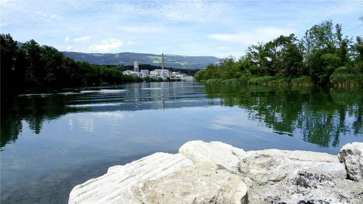 Idyllische Schönheit: Beim Emmenspitz in Zuchwil fliessen die Aare (l.) und die Emme (r.) zu einem einzigen Fluss zusammen; die vereinten Gewässer heissen fortan Aare.