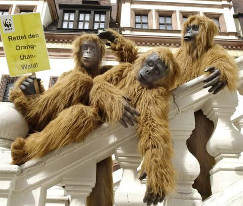 Aktivisten von WWF als Affen verkleidet posieren in Leipzig.