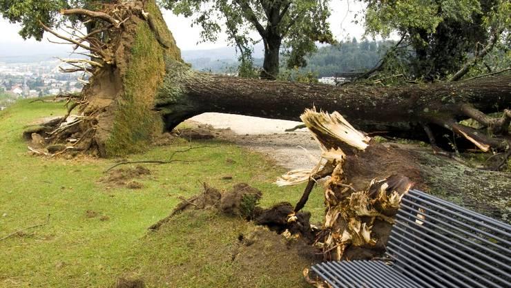 Die Sommerstürme im Juni und Juli 2011 verwüsteten weite Teile des Kantons Aargau. az-Archiv