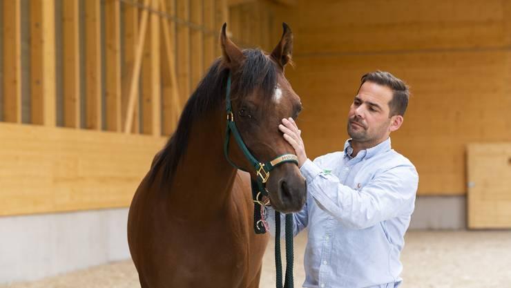 Dr. Christian Czech, Leitender Tierarzt, mit dem Pferd Don Juan, fotografiert in der Pferdeklinik Niederlenz, am 10. Oktober 2019.