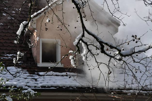 Die Ermittlungen haben ergeben, dass der Brand aufgrund einer eingeschalteten Herdplatte entstanden ist.