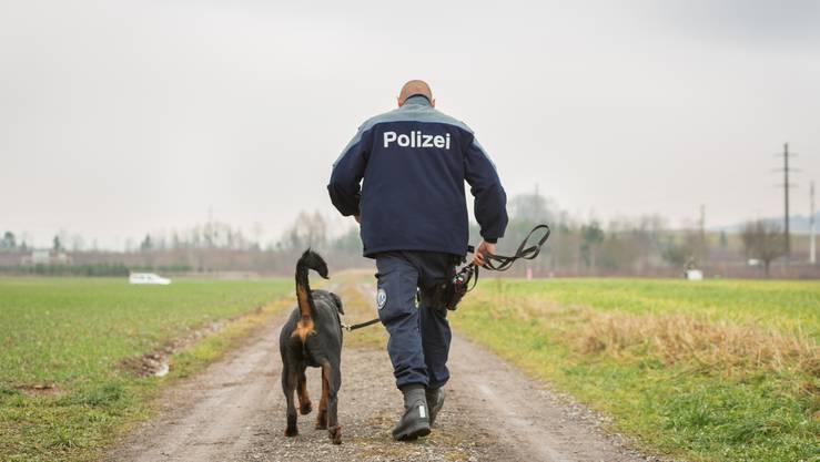 Ausblick: Womöglich schliesst Rottweiler Gysmo bereits Ende 2018 seine grosse Abschlussprüfung ab.