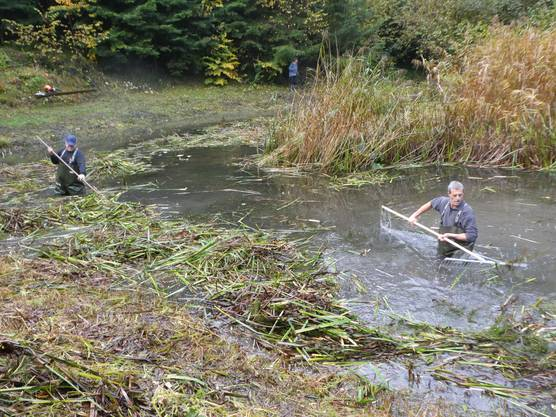Präsi Marcel Christinat und Willi Stadler trauten sich ins Wasser
