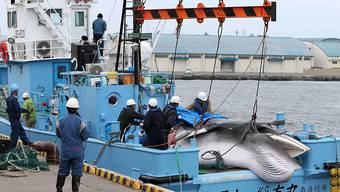 Ein japanisches Fischereiboot. (Archivbild)