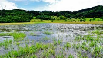 Überschwemmte Wiese zwischen Muttenz und Pratteln. Auch Zunzgen war stark vom Unwetter betroffen.