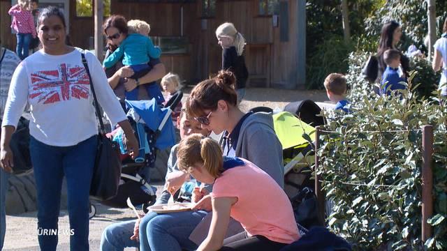 5000 Besucher pro Tag im Zürich Zoo