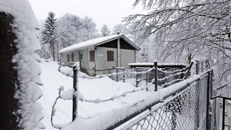 Der Eingang zur ehemaligen Bloodhound-Flab-Stellung auf dem Hällchöpfli bei Rumisberg. (Foto: André Albrecht)