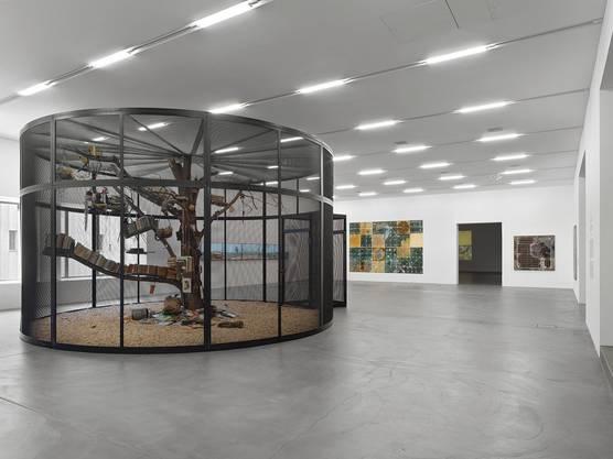 Die Natur verwildert die Kunst, die Kunst domestiziert die Natur: «The Library for the Birds of Zürich» von Mark Dion ist bis zum 11. Oktober im Migros-Museum Zürich zu sehen.