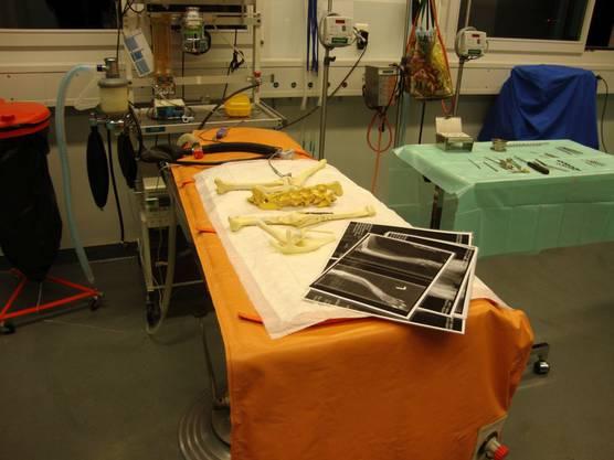 Chirurgie Tierklinik AW.jpg