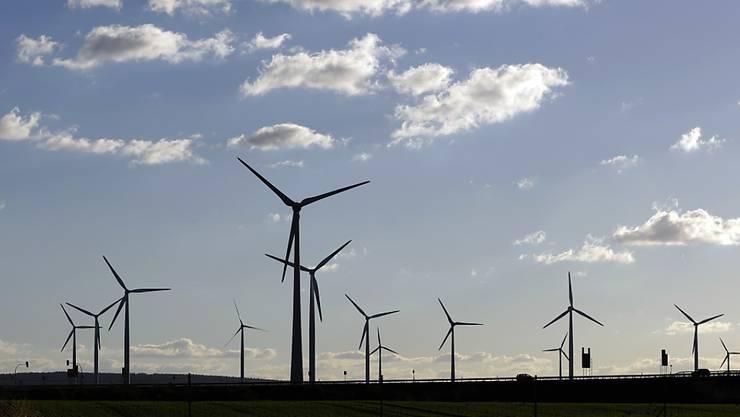 In Deutschland haben im ersten Halbjahr Windturbinen und Photovoltaikanlagen mehr Strom geliefert als Kohlekraftwerke. (Archivbild: Windturbinen in der Nähe von Halle)