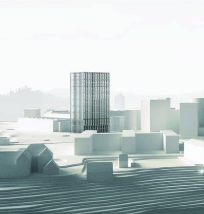 Es werden zwei annähernd gleiche Bauten vorgeschlagen. Sie erscheinen feingliedrig und werden durch die vertikalen und horizontalen Kunststeinelemente aus faserarmiertem Beton geprägt. Der Ausdruck ist zu urban für das umliegende Industriegebiet, die Bauweise mit den zweistöckigen offenen Arkaden dürfte aufwändig sein. (rr) Graber Pulver Architekten AG, Zürich