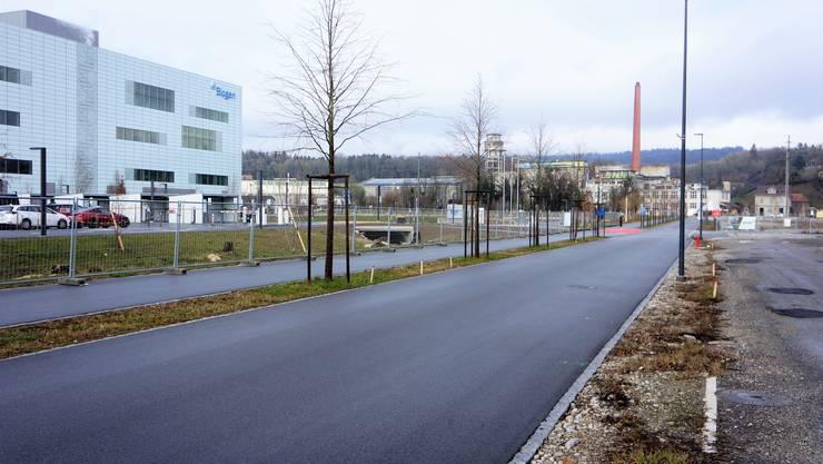 Attisholz Süd: Fortsetzung der Attisholzstrasse in Richtung Bahnhof Luterbach