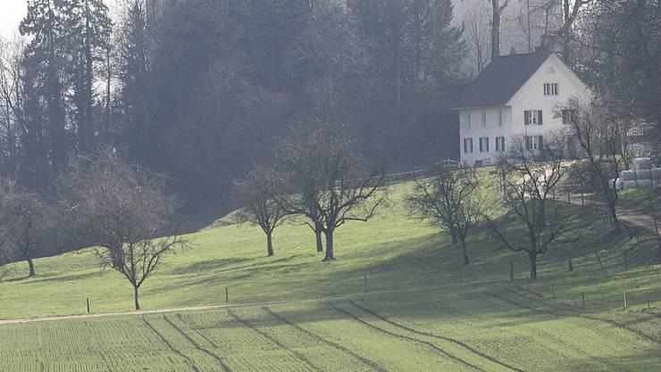 Kleinod: Das Schloss Wildenstein in Veltheim. (Lorenz Frischknecht/Archiv)