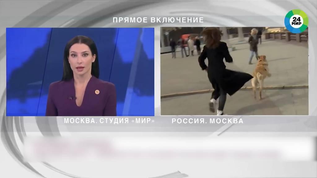 Während Live-Schaltung: Hund klaut Mikrofon von Reporterin