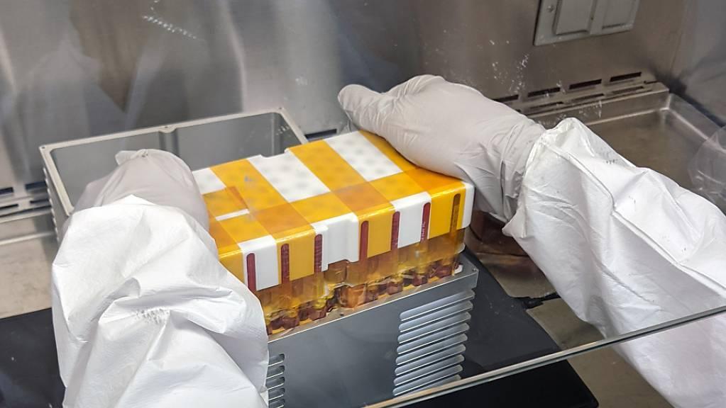Die zuvor auf der Erde vorbereiteten Stammzellen fliegen in einem Mini-Labor zur ISS. (Pressebild)