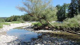 Naturreservat Grien-Wöschnau