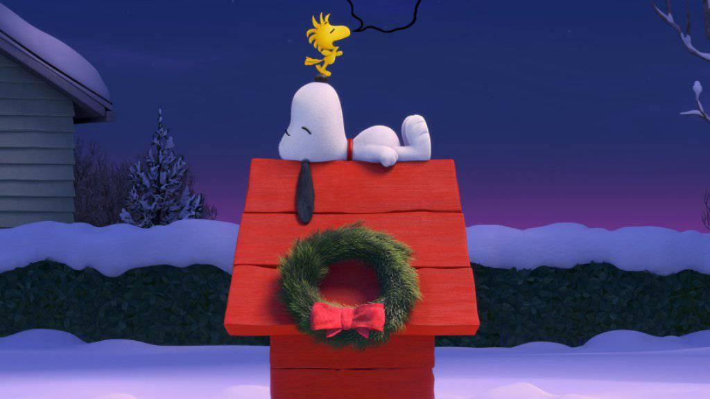 Snoopy wohnt ineiner roten Hundehütte.