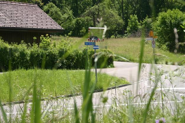 Strassenübergang bei Waldkindergarten bleibt im Fokus.